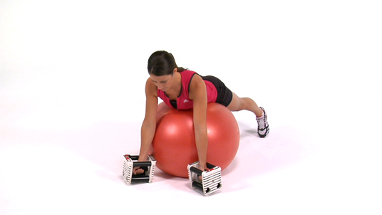 Ys - Dumbbells (Stability Ball)
