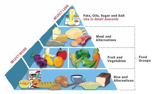 Balanced Diet for Children